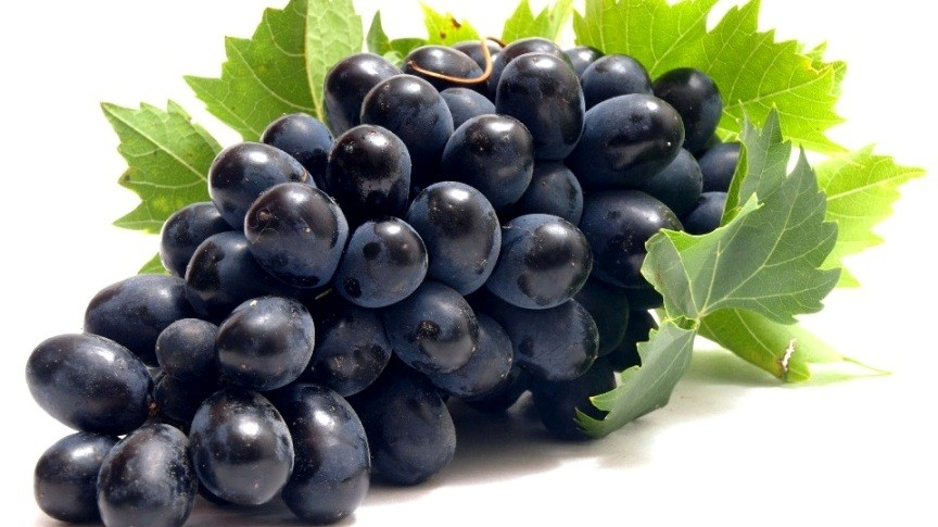Grapes - Sharad Seedless