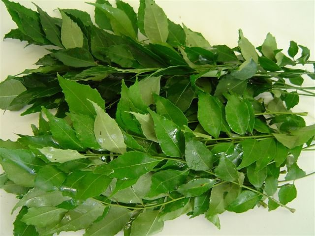 Curry Leaves - Grade A