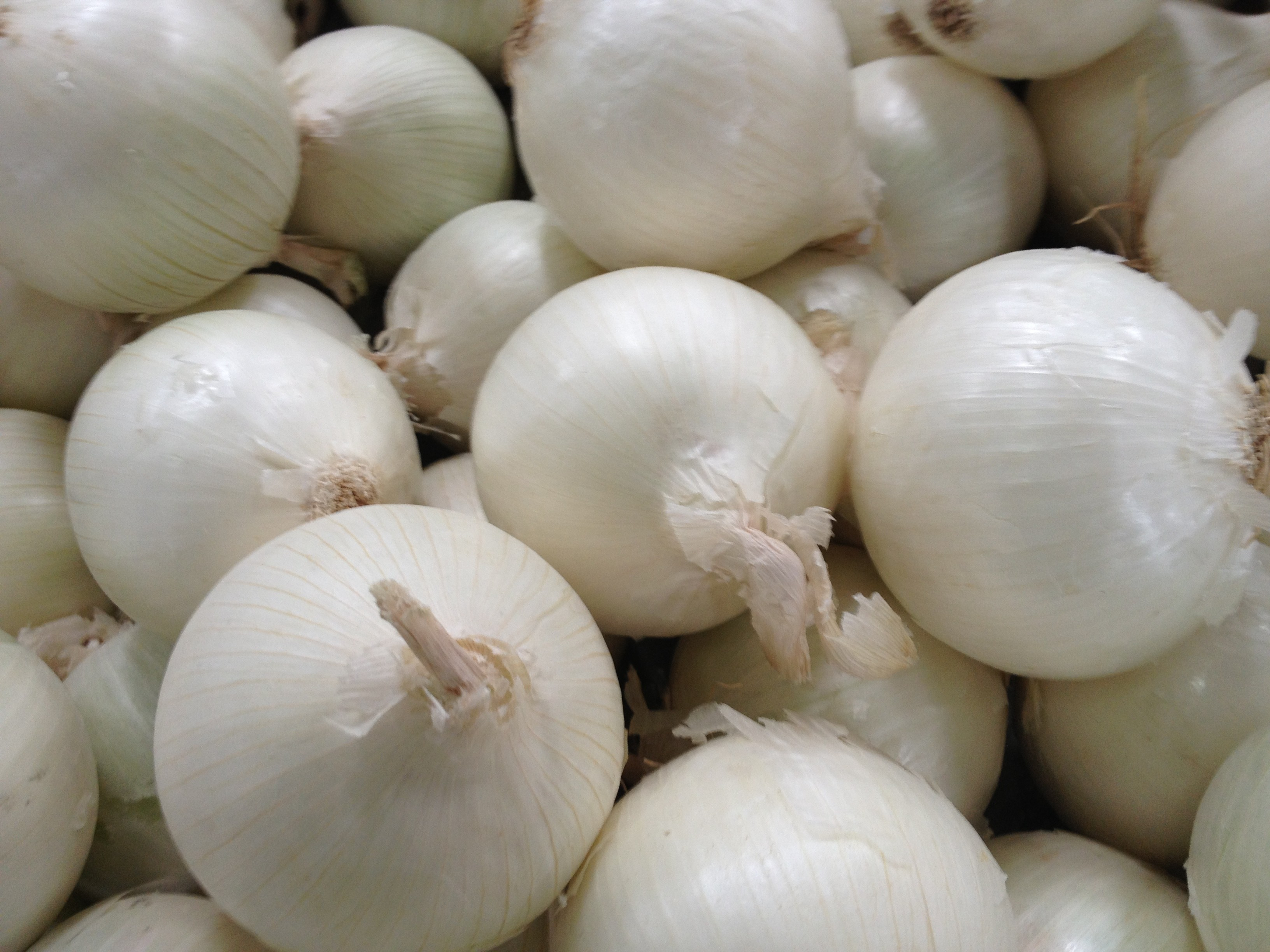 White Onion - Grade A Quality
